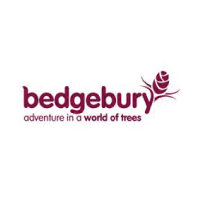 Bedgebury adventure in a world of trees